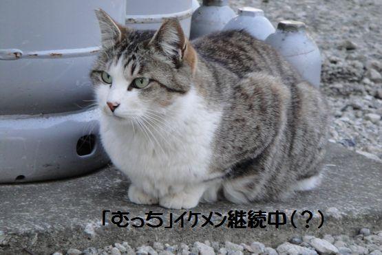 4.26むっち.jpg