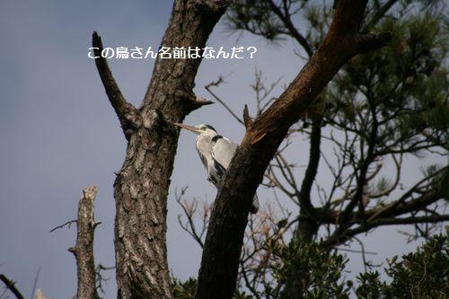 東尋坊③.jpg