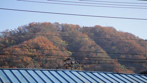 武生の駅から.jpg