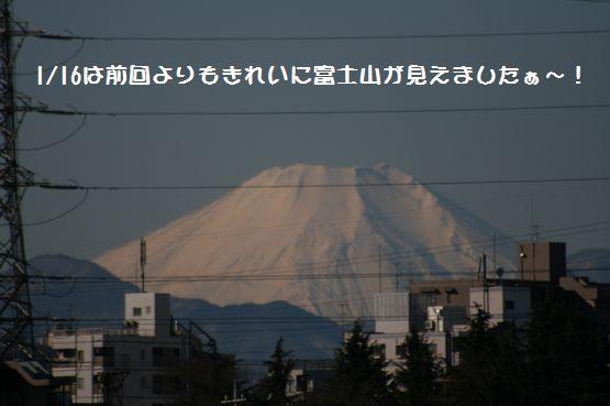 多摩川②.jpg