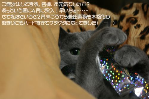 IMG_7431.jpg
